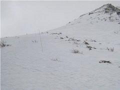 峰の辻手前の登山道
