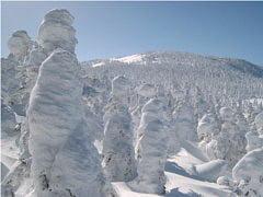 樹氷と西吾妻