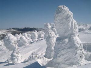 吾妻山の樹氷群