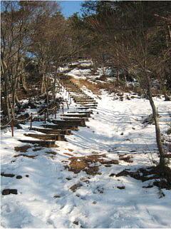 赤坂山登山道