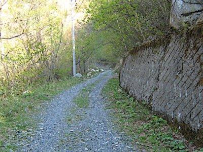 三股への林道