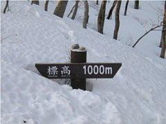 標高1000m