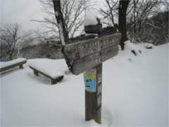 蛇谷ヶ峰標高813m
