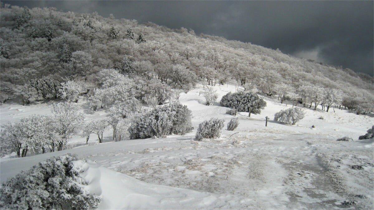 冬の三峰山