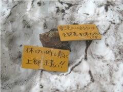 雪渓上の落石