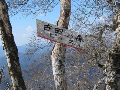古田の森ピーク表示