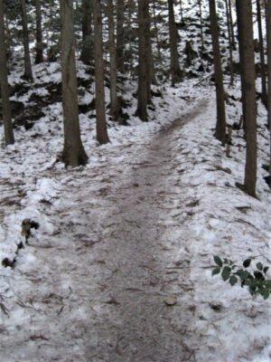 高見山登山道