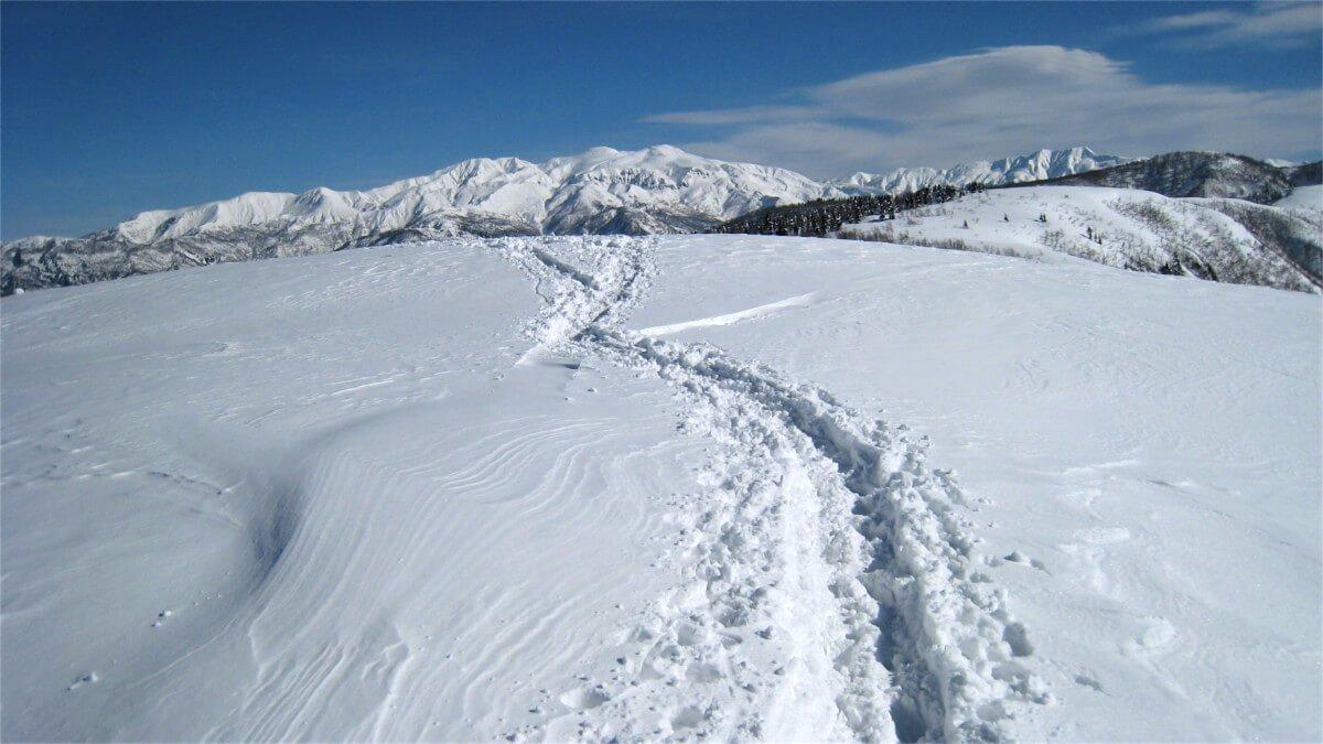 冬の取立山
